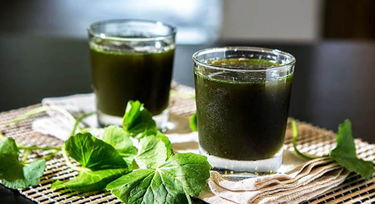 Mỗi ngày uống một cốc rau má giúp cải thiện tình trạng đau thần kinh tọa rất tốt