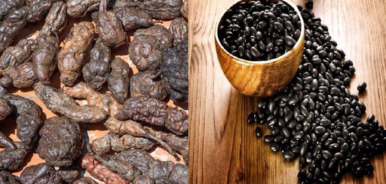 Hà thủ ô chữa rụng tóc khi kết hợp với đậu đen
