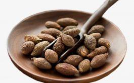 Người ta truyền tai nhau rằng uống hạt đười ươi có thể thể trị được bệnh gai cột sống. Thực tế hiệu quả của cách này thế nào khiến nhiều người băn khoăn.