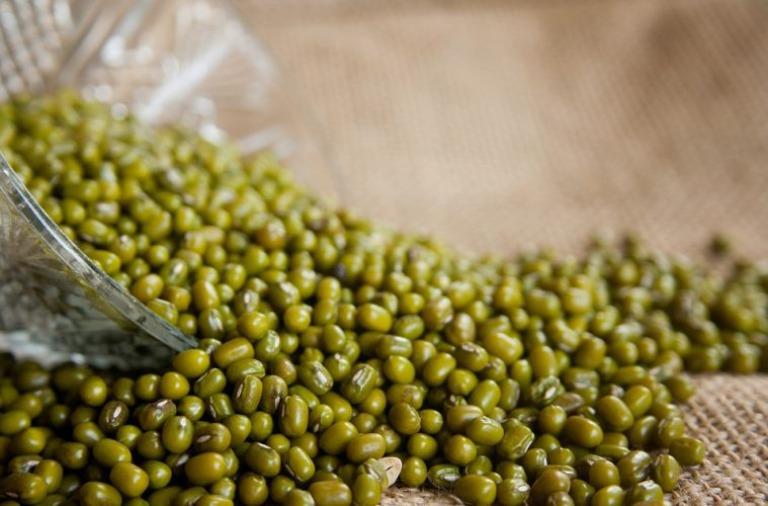 Dùng đậu xanh chữa bệnh gout là mẹo được áp dụng phổ biến trong dân gian