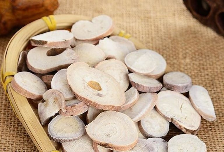 Bạch thược là một vị thuốc quý trong việc đẩy lùi đau dạ dày, viêm loét dạ dày
