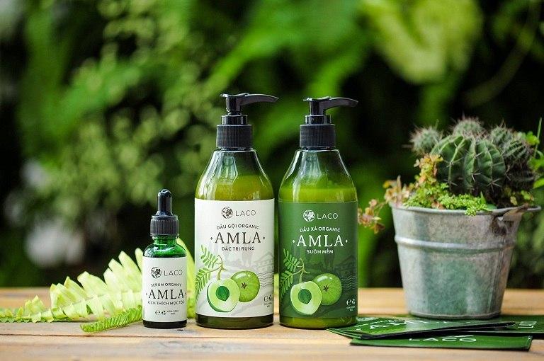 Dầu gội trị rụng tóc Amla chiết xuất chính từ quả Amla Ấn Độ