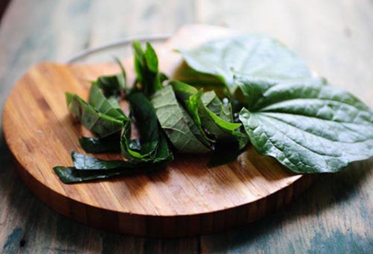 Dùng lá lốt chế biến thành các món ăn sử dụng hàng ngày để cải thiện bệnh