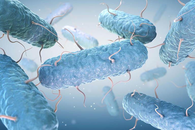 Nhiễm vi khuẩn chính là nguyên nhân gây viêm niệu đạo mãn tính