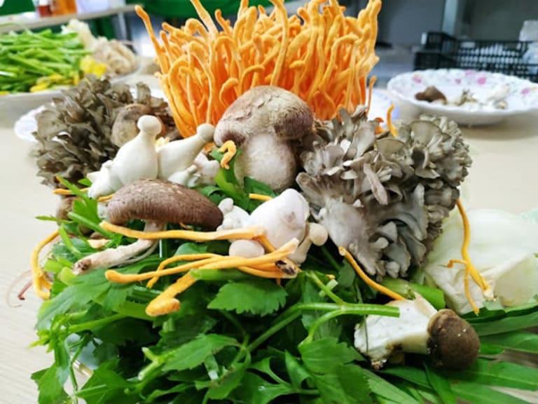Dùng đông trùng tươi thả lẩu tăng thêm hương vị cho món ăn