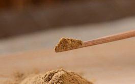 Đông trùng hạ thảo dạng bột có tốt không, cách sử dụng và một số lưu ý