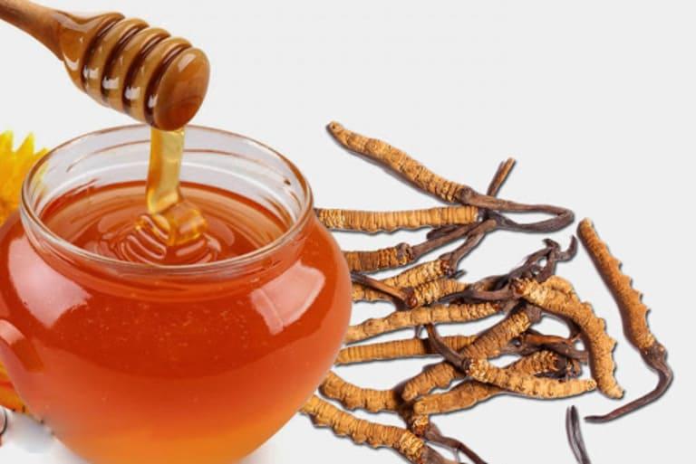 Mật ong nguyên chất được sử dụng ngâm với đông trùng nguyên con, dưỡng chất cho sức khỏe