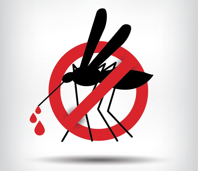 Nâng cao ý thức của bản thân để xây dựng một cộng đồng không có muỗi vằn và không bị nhiễm bệnh sốt xuất huyết
