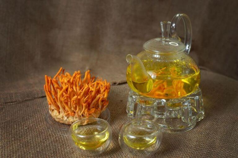 Uống trà đông trùng hạ thảo mỗi ngày rất tốt cho sức khoẻ