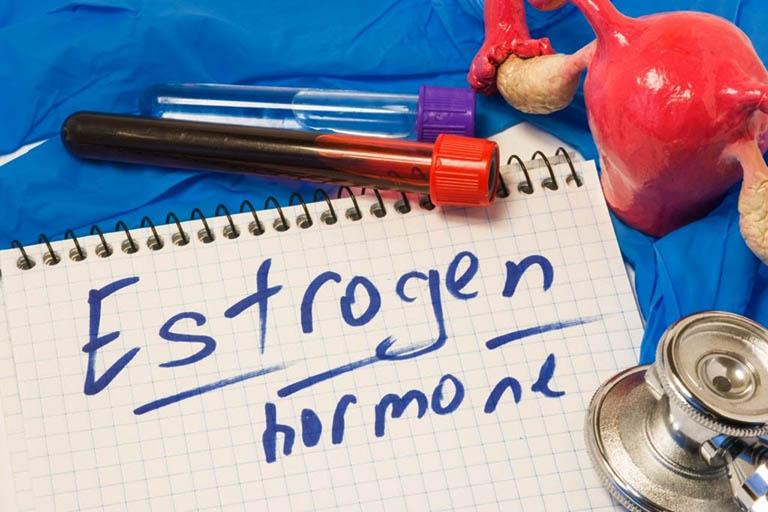 Thực phẩm không làm gia tăng chỉ số hormone estrogen trong cơ thể quá mức là tiêu chí hàng đầu trong việc xây dựng thực đơn cho phụ nữ bị u xơ tử cung