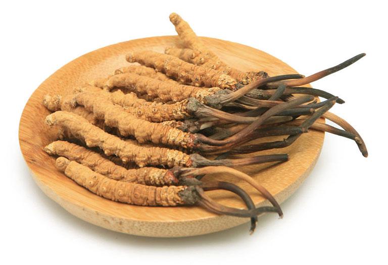 Hình ảnh đông trùng hạ thảo khô