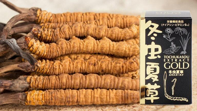 Viên uống đông trùng Tochukasou Extract Gold