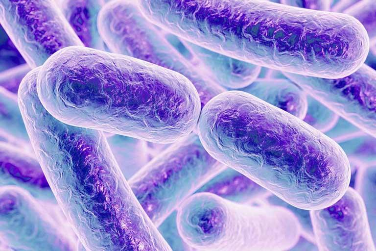 Bệnh viêm đại tràng giả mạc xảy ra khi vi khuẩn C. difficile phát triển quá nhanh