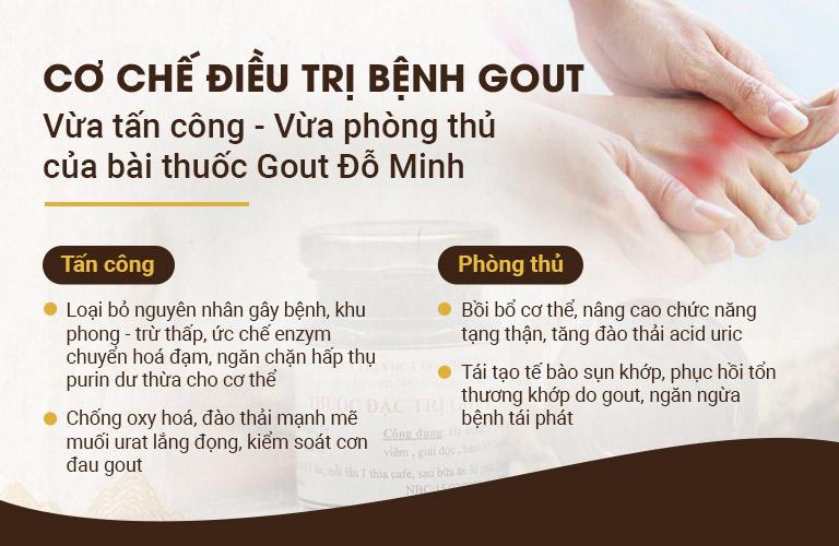 Cơ chế tác động của bài thuốc Gout Đỗ Minh